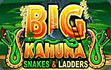 Игровой автомат Большой Кахуна Змеи И Лестницы