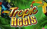 Игровой аппарат Tropic Reels